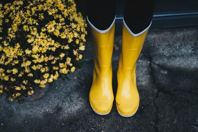 lambo rain boots home